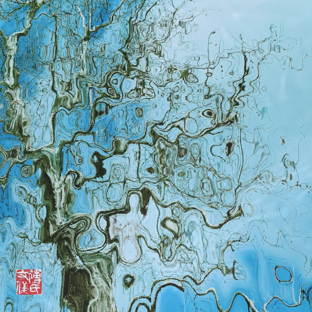 1 Old Tree in Autumn Sunset, Fu Wenjun, 60x60cm, Digital Pictorial Photography, 2017-2018.jpg