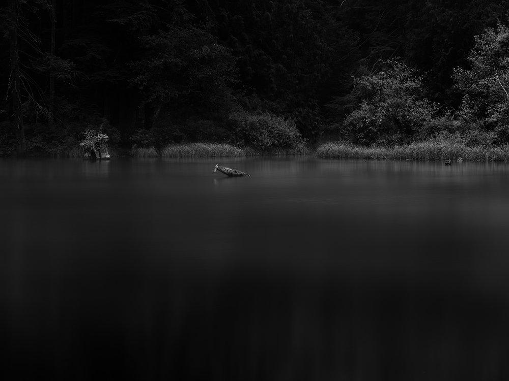 Blog 7 -Illuminated Lake.jpg