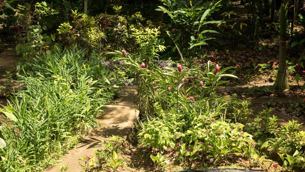 St. Lucia Gardens