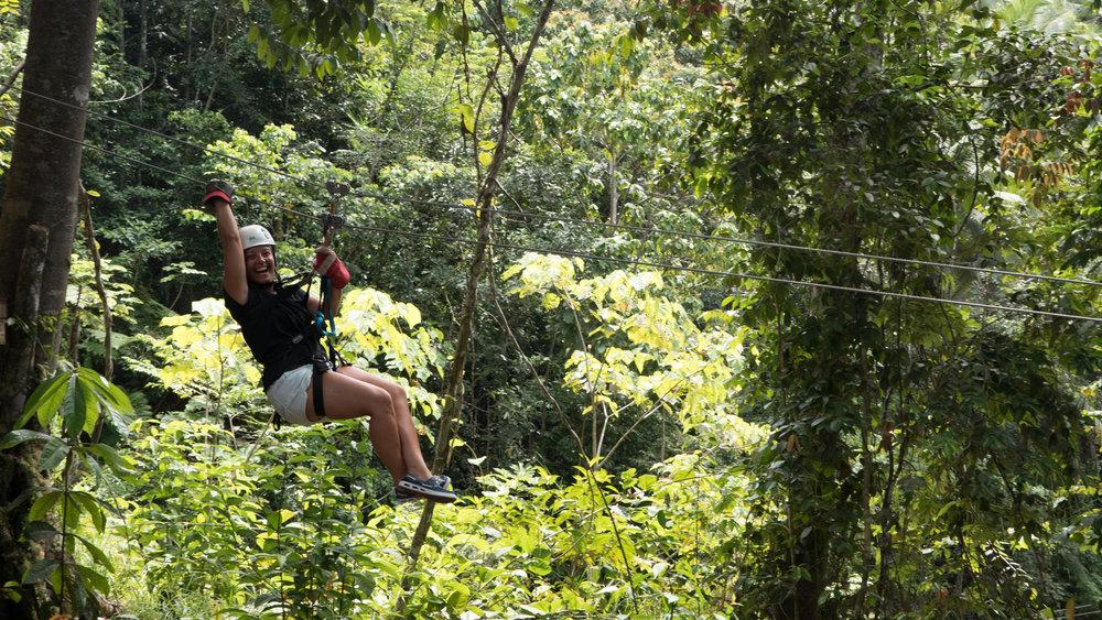 Treetop Canopy Ziplining