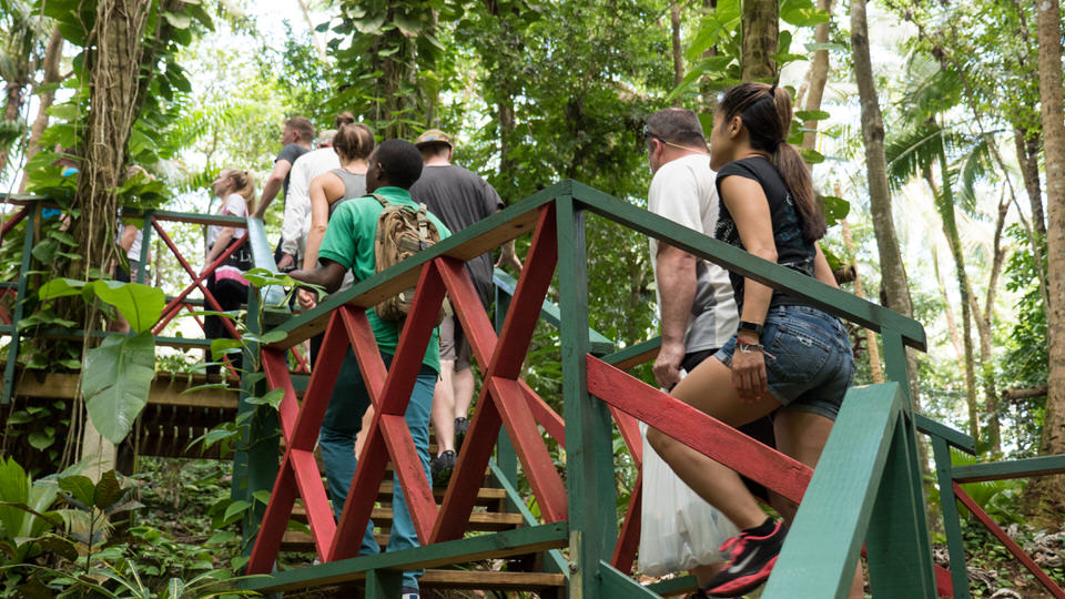 Tours in St Lucia 8.jpg