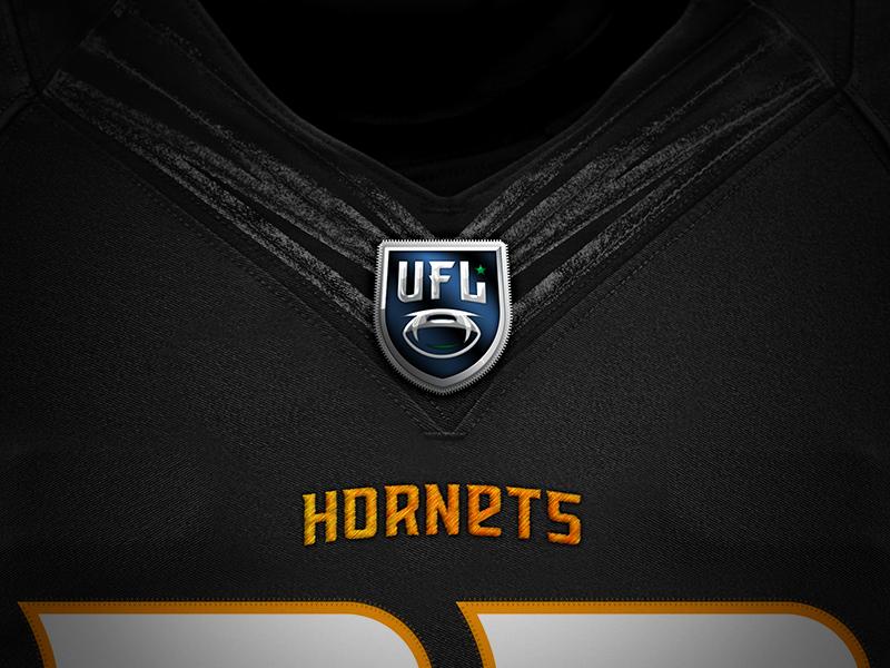 hornets_port4_chest.jpg