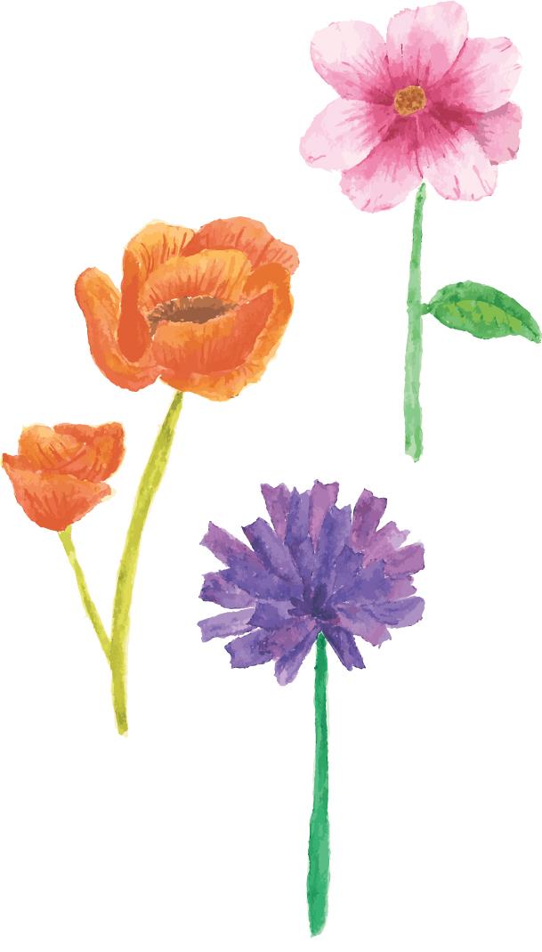 Audrey-flowers.jpg