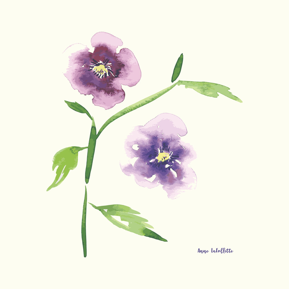 pansies-art-print.jpg