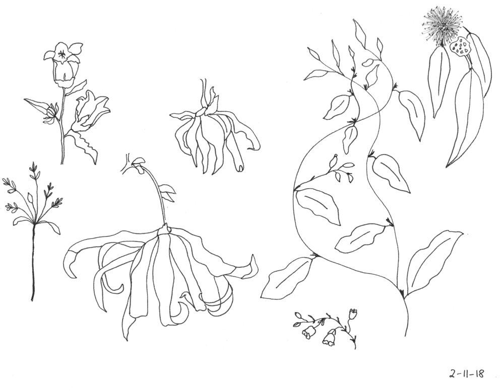 Sketches in Feb.jpg