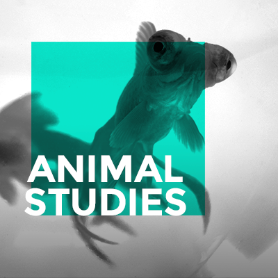 AnimalStudies