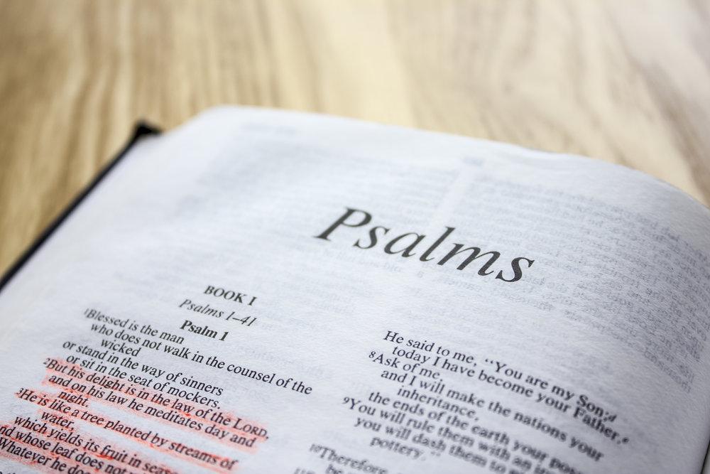 Bible Psalms.jpg