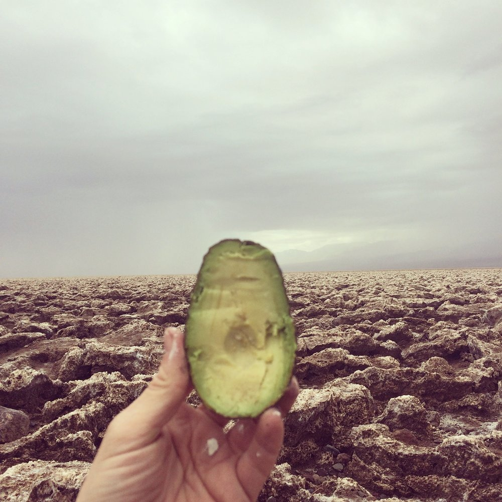 avocado death valley.jpg