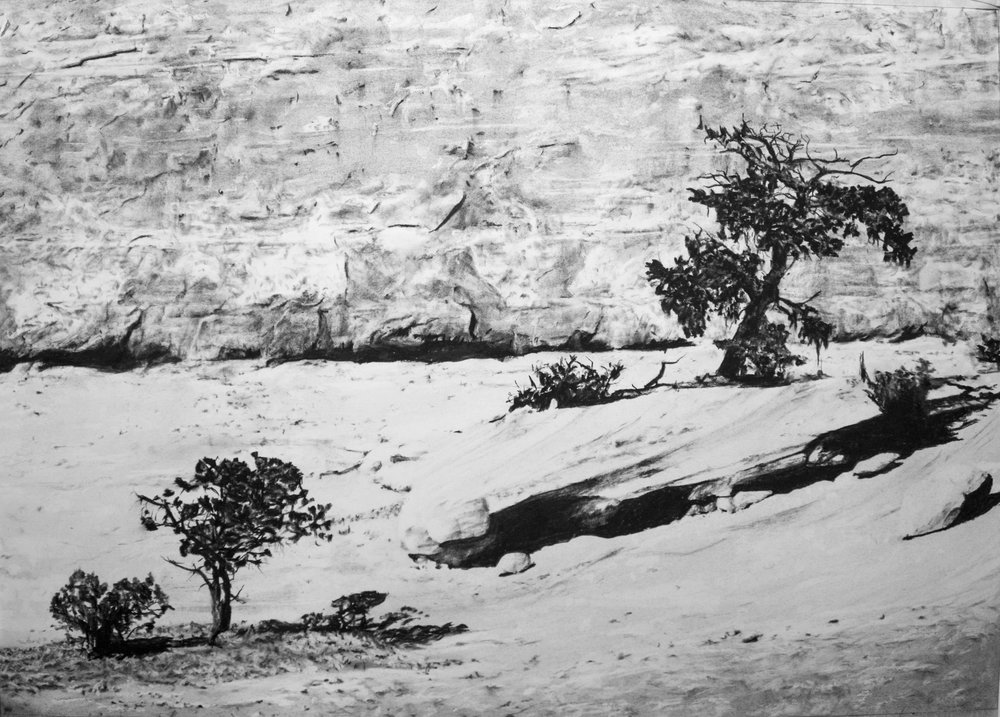 Cedar Mesa Formation II