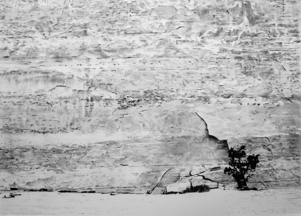 Cedar Mesa Formation I
