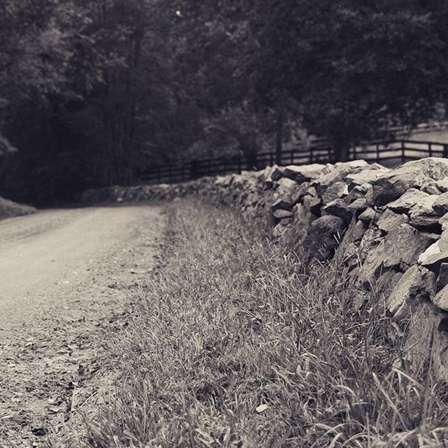Nothing says country life like a good rock wall and dirt road... #middleburgmoment #bwphoto #middleburg #middleburgva #canon7d