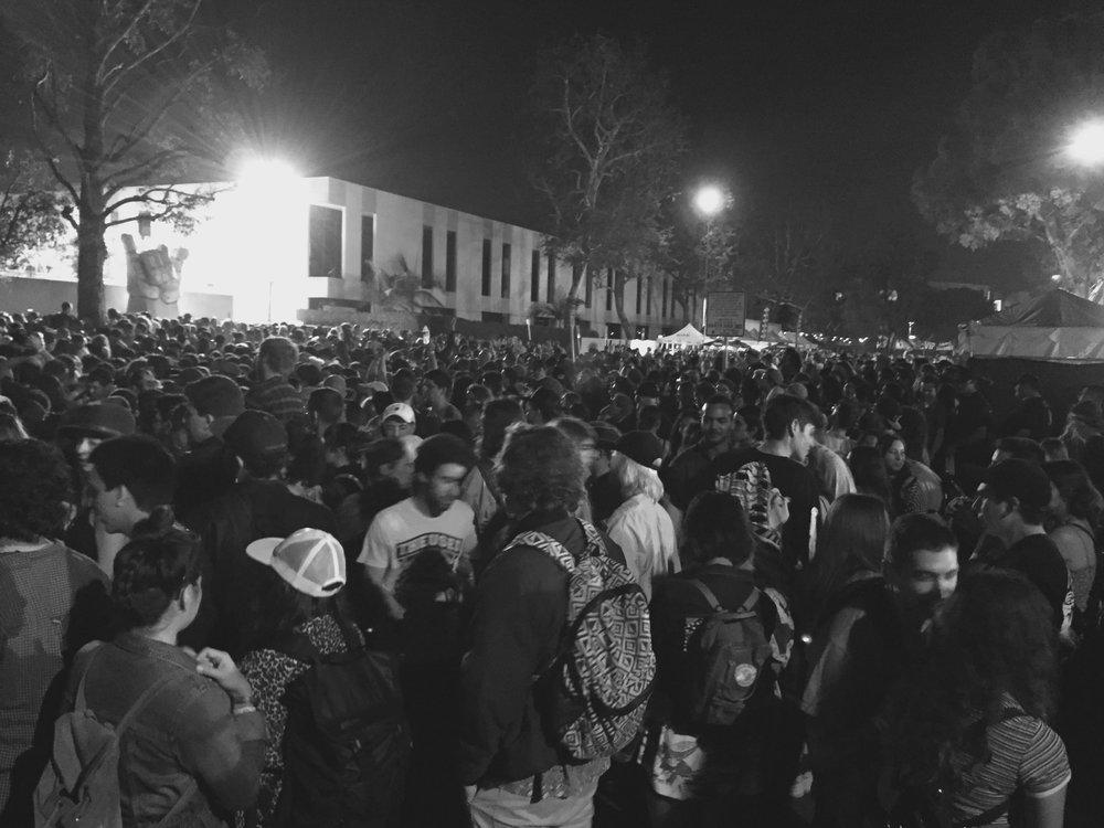the-crowd.jpeg