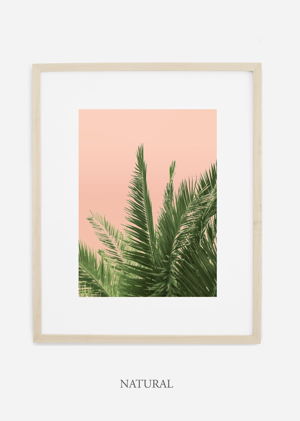tropicaldecor_WilderCalifornia_PinkPalmTree_No.2_NaturalFrame.jpg