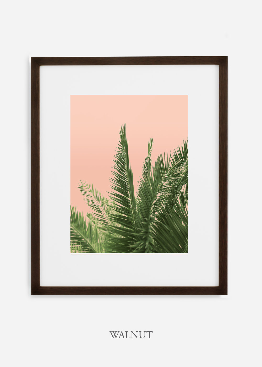 tropicaldecor_WilderCalifornia_PinkPalmTree_No.2_WalnutFrame.jpg