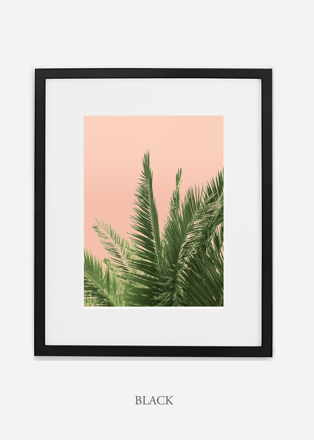 tropical_palmtree_interiordesign_PinkPalmNo2_BlackFrame.jpg