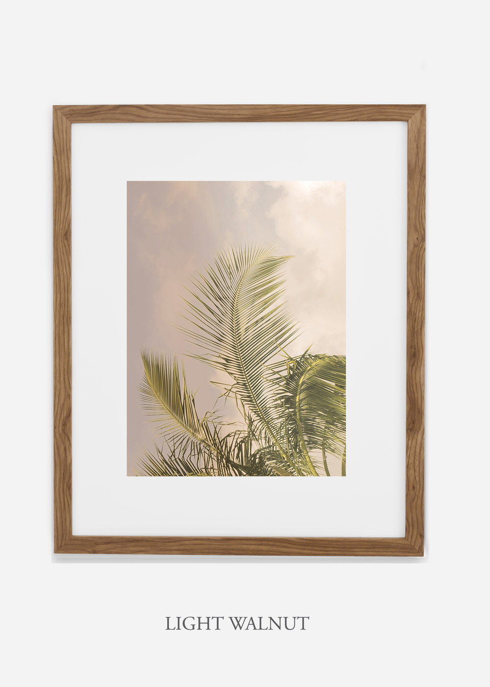 WilderCalifornia_PalmTree_Art_Photography_interiordesign_lightwalnutframe.jpg