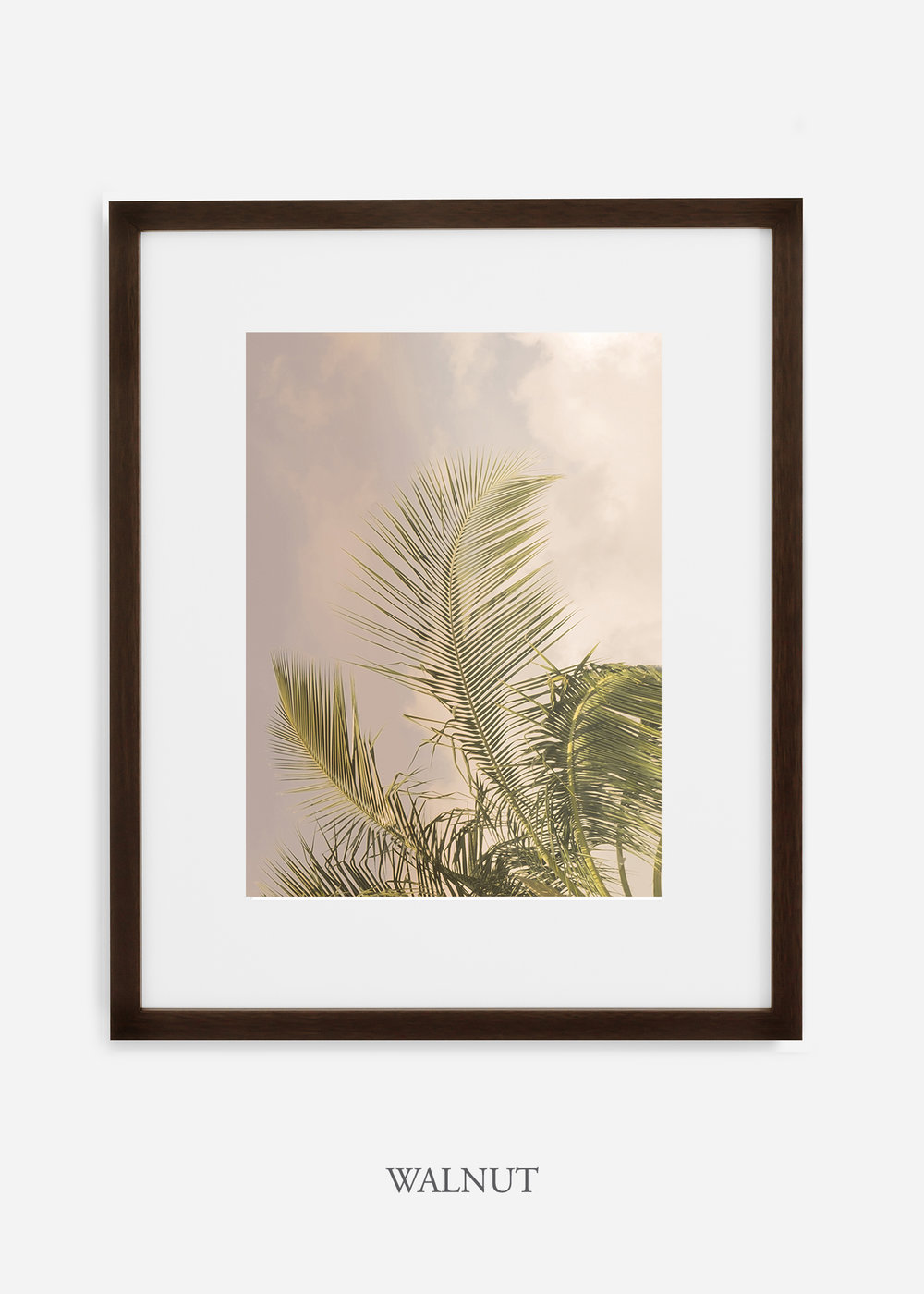 WilderCalifornia_PalmTree_Art_Photography_interiordesign_walnutframe.jpg