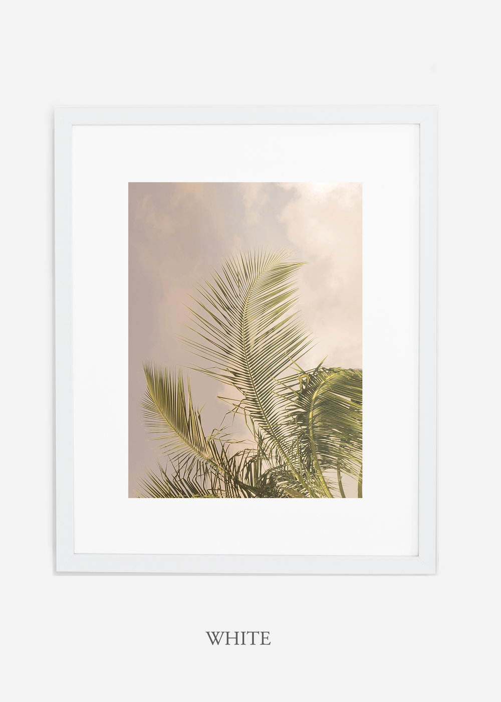 WilderCalifornia_PalmTree_Art_Photography_interiordesign_whiteframe.jpg