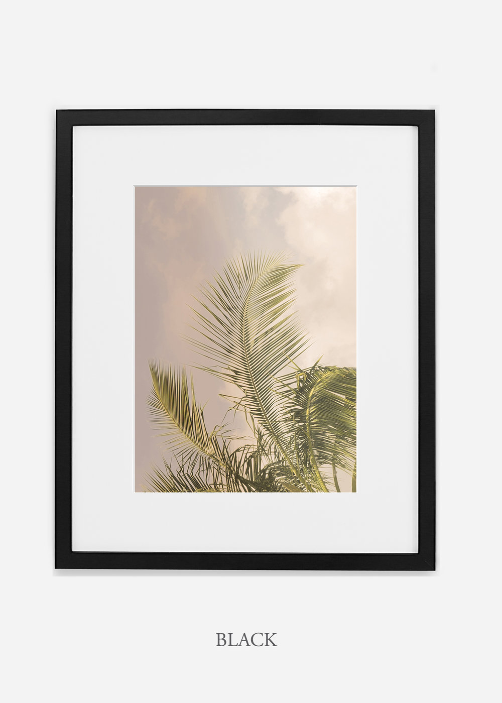 WilderCalifornia_PalmTree_Art_Photography_interiordesign_blackframe.jpg