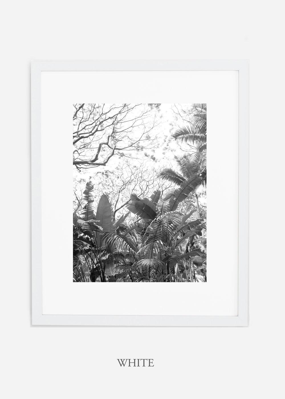 tropicaldecor_WilderCalifornia_TropicalRainforest2_Art_Photography_interiordesign_whiteframe.jpg