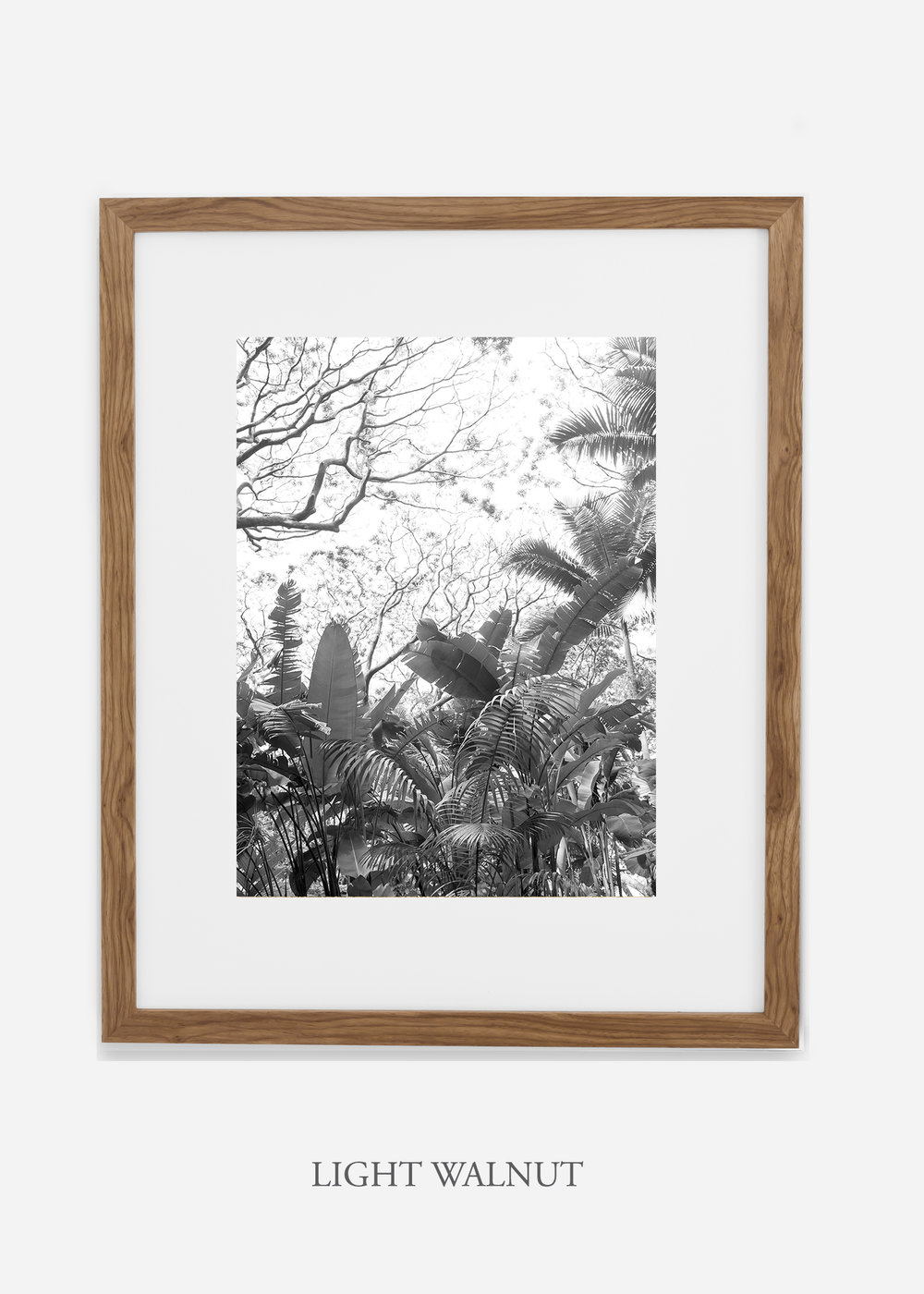 tropicaldecor_WilderCalifornia_TropicalRainforest2_Art_Photography_interiordesign_lightwalnutframe.jpg