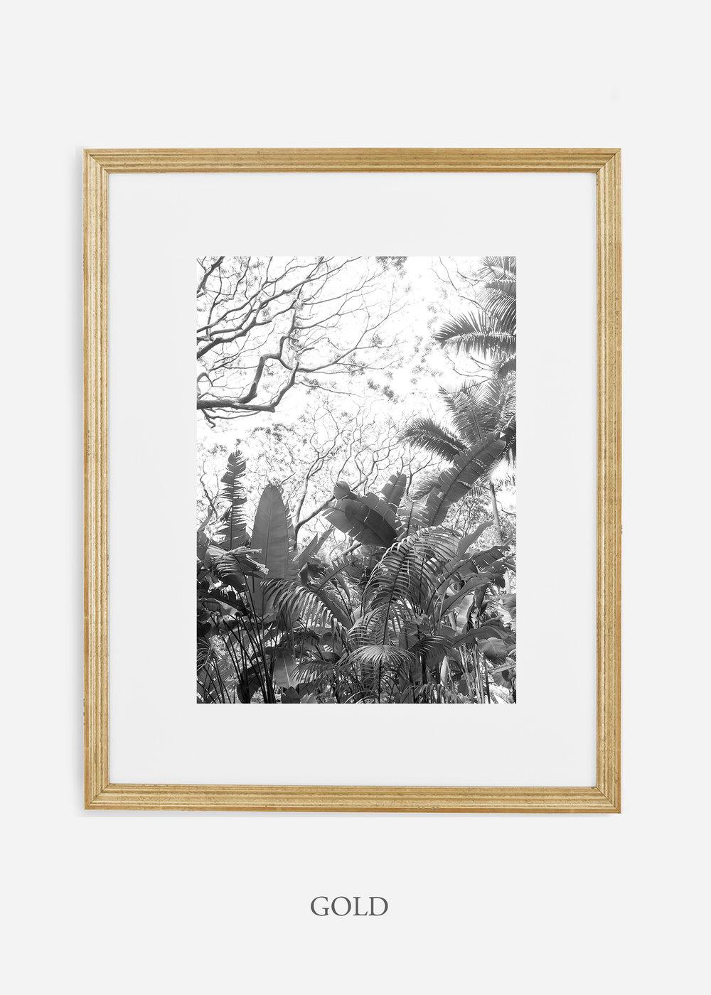 tropicaldecor_WilderCalifornia_TropicalRainforest2_Art_Photography_interiordesign_goldframe.jpg