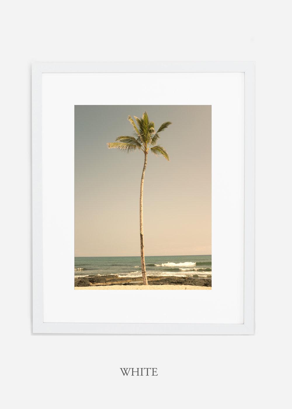 WilderCalifornia_PalmTree_No2_Art_Photography_interiordesign_whiteframe.jpg