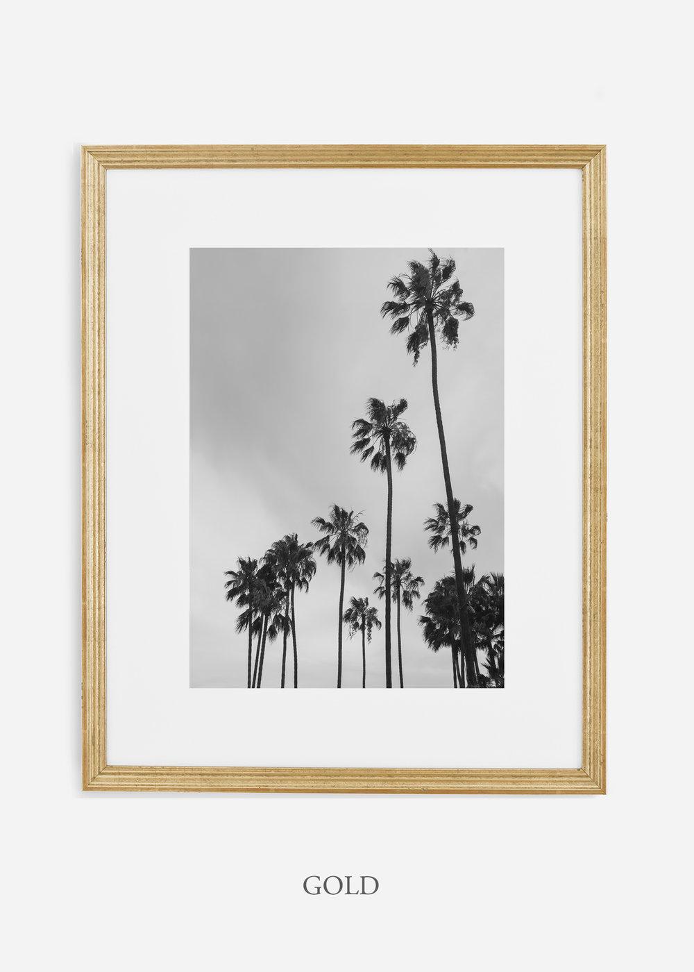 interiordesign_california_losangeles_palmtree_goldframe.jpg