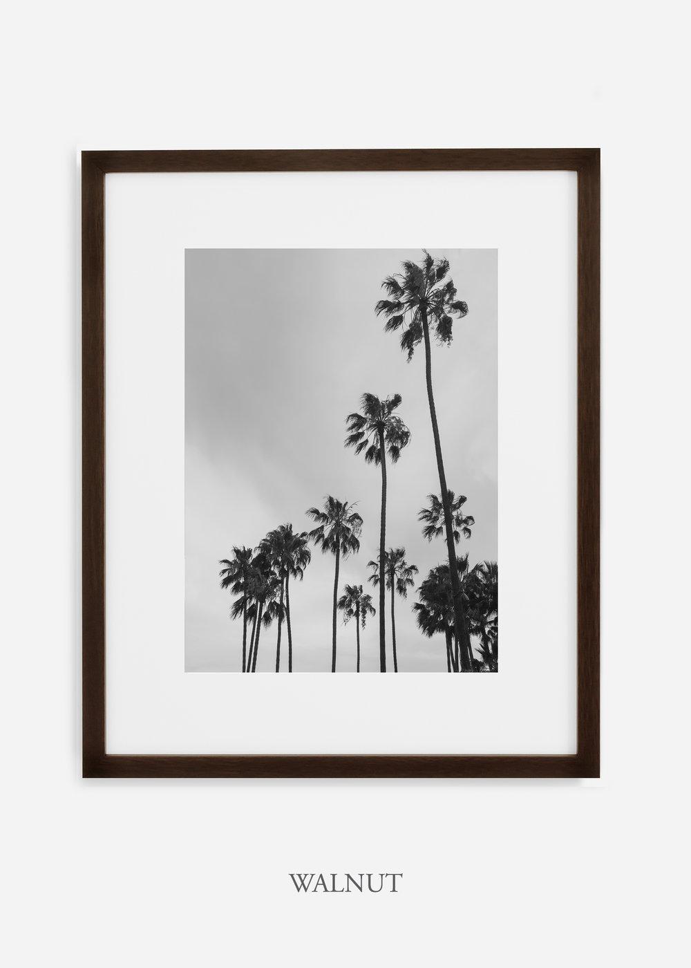 interiordesign_california_losangeles_palmtree_walnutframe.jpg