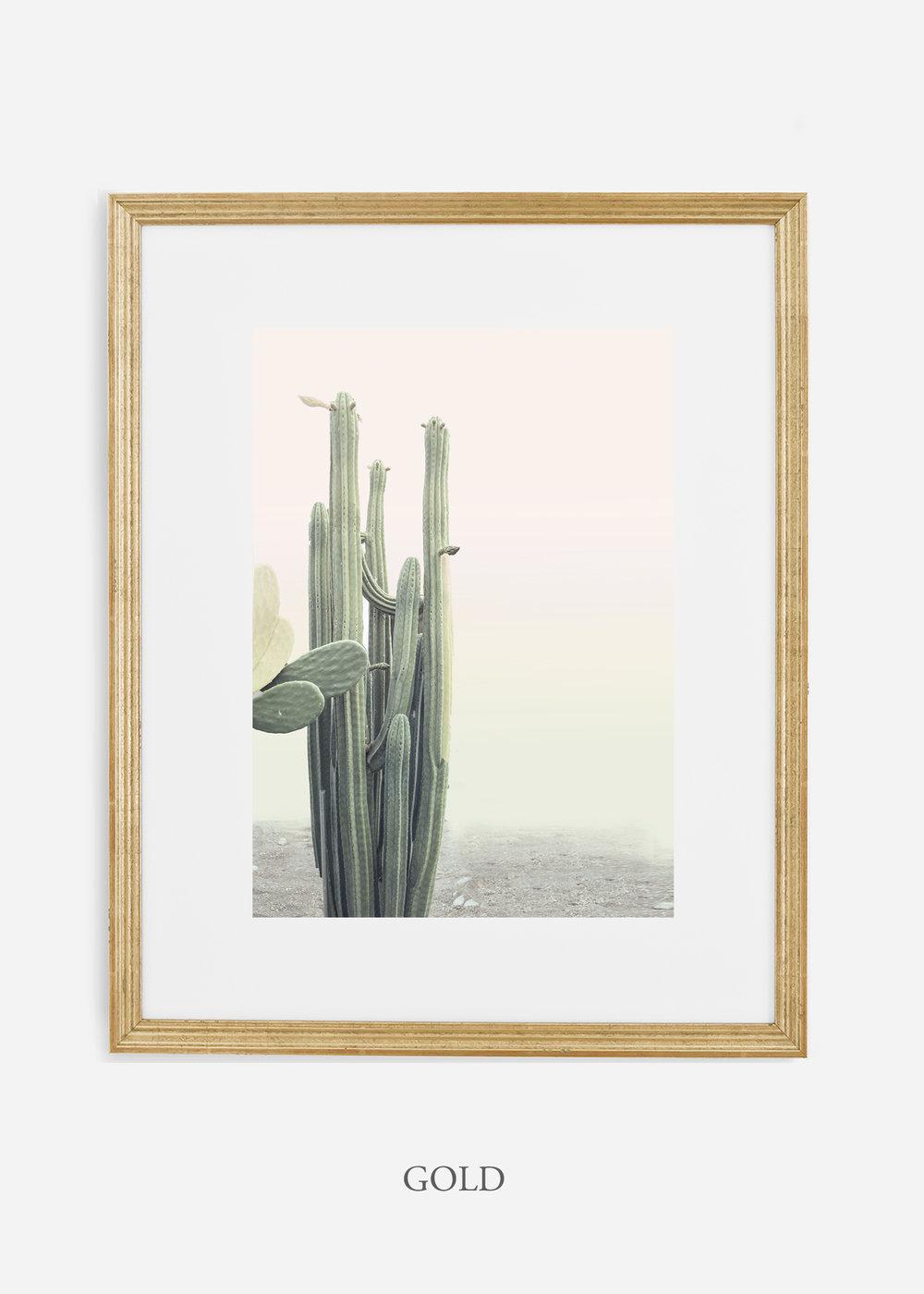wildercalifornia_californiacactusNo.1_interiordesign_desertdecor_bohemian_goldframe.jpg
