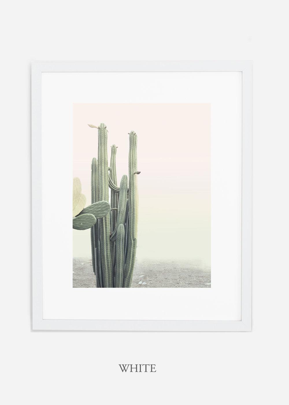 wildercalifornia_californiacactusNo.1_interiordesign_desertdecor_bohemian_whiteframe.jpg