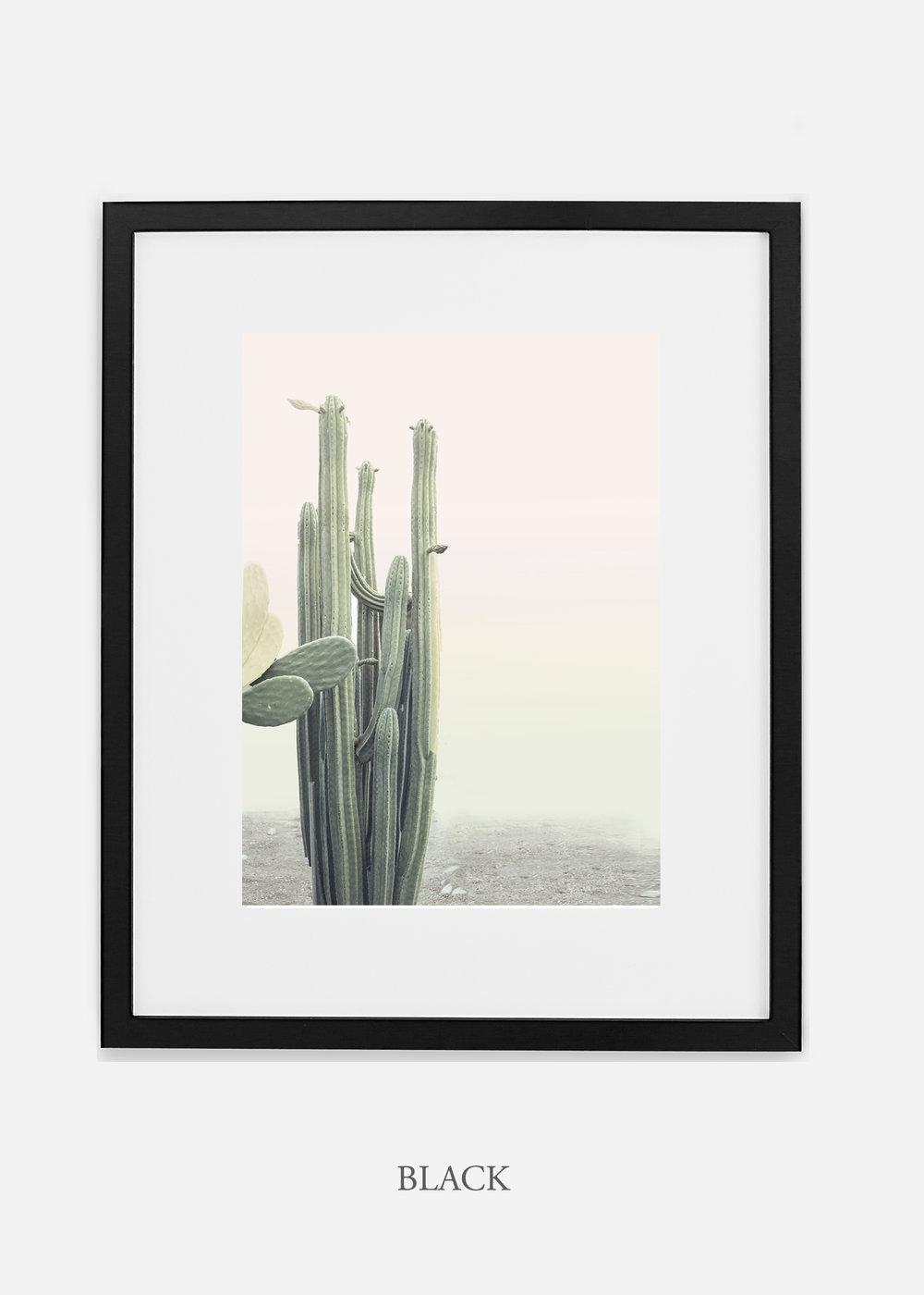 wildercalifornia_californiacactusNo.1_interiordesign_desertdecor_bohemian_blackframe.jpg
