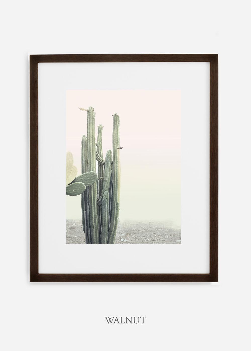 wildercalifornia_californiacactusNo.1_interiordesign_desertdecor_bohemian_walnutframe.jpg