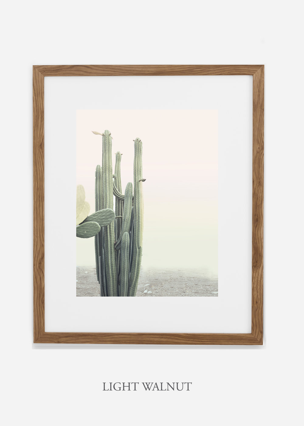 wildercalifornia_californiacactusNo.1_interiordesign_desertdecor_bohemian_lightwalnutframe.jpg