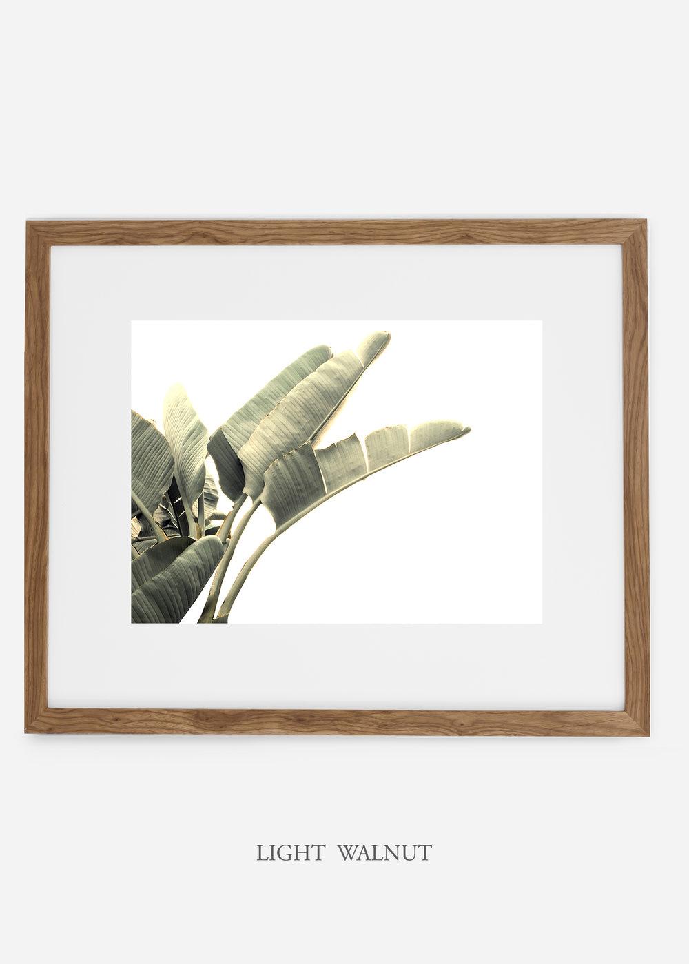 WilderCalifornia_interiordesign_art_lightwalnutframe_BananaLeafNo.1_Mat.jpg