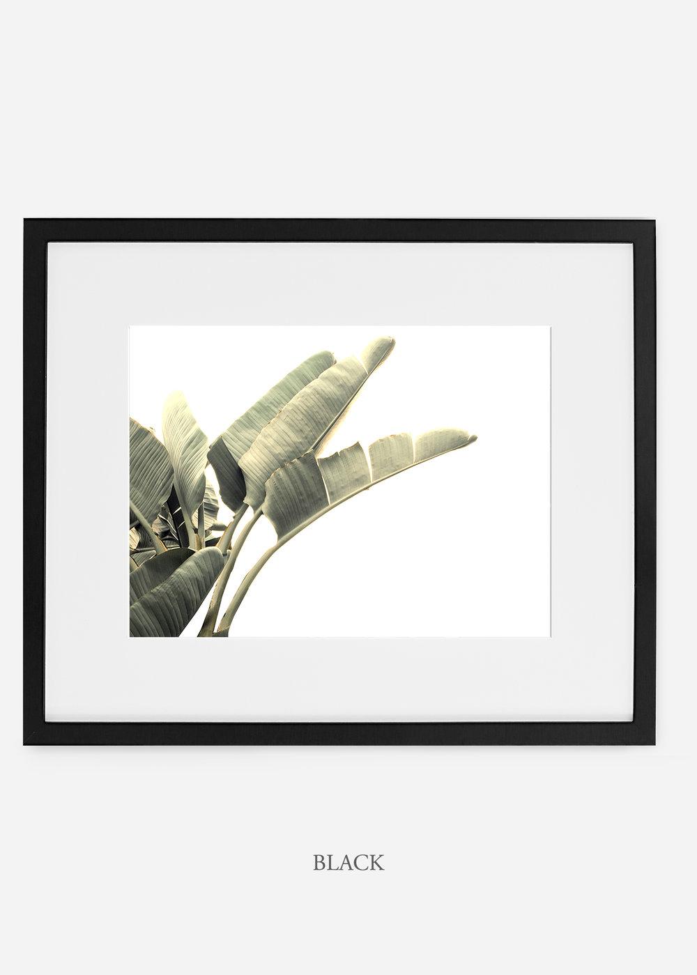 WilderCalifornia_interiordesign_art_whiteframe_BananaLeafNo.1_Mat.jpg