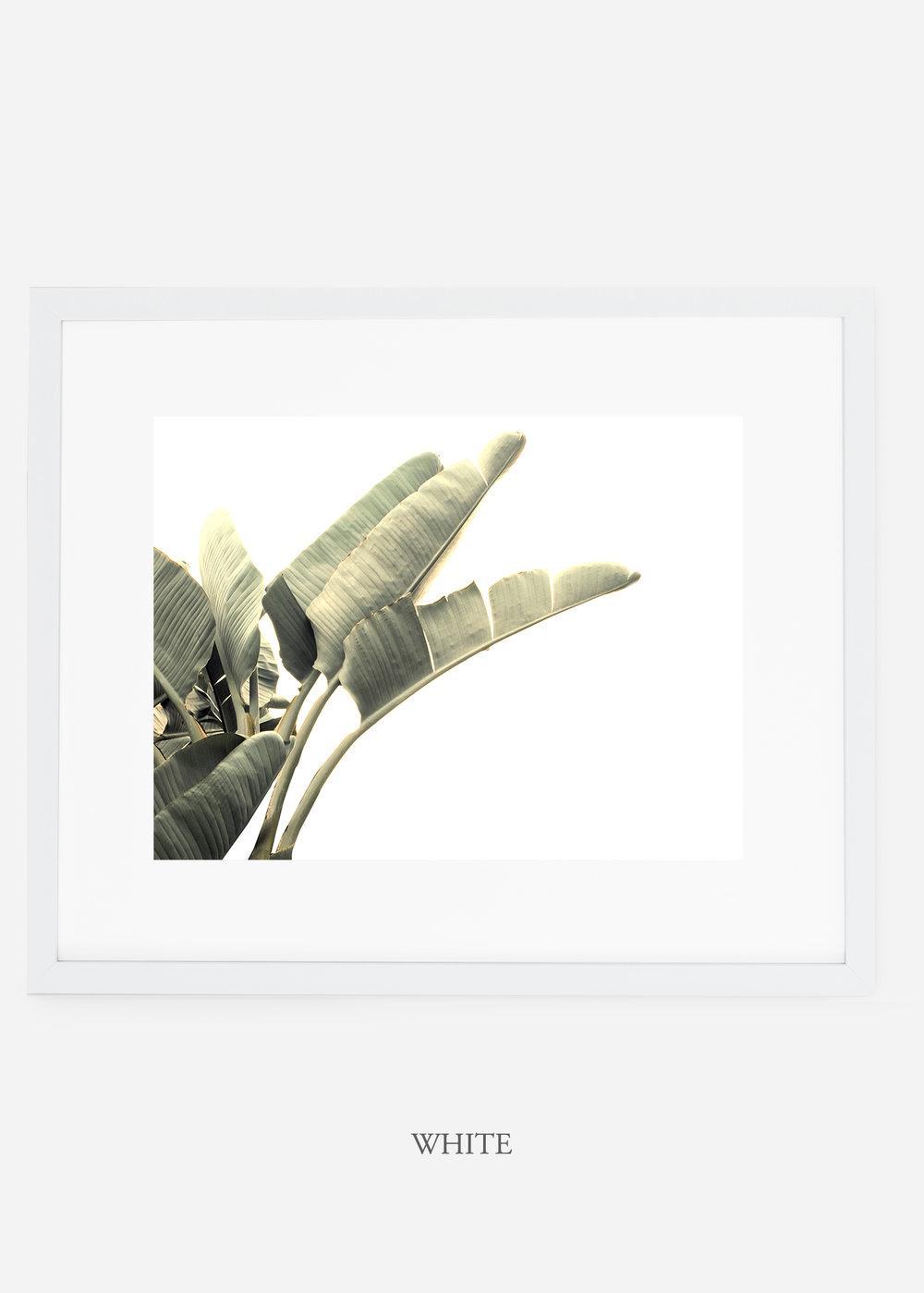 WilderCalifornia_interiordesign_art_whiteframe_RainforestNo.1_Mat.jpg