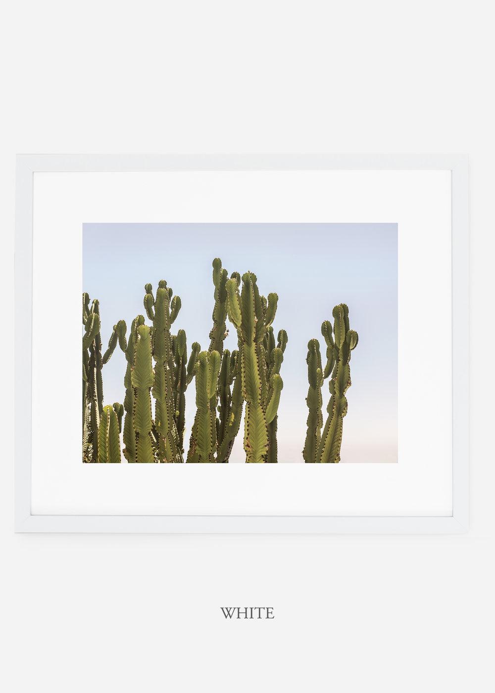WilderCalifornia_whiteframe_interiordesign_cactusprint_CaiforniaCactusNo.3.jpg