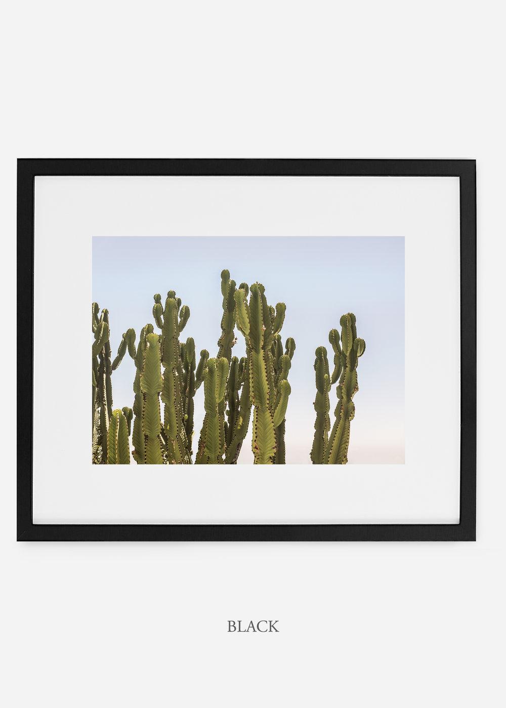 WilderCalifornia_blackframe_interiordesign_cactusprint_CaiforniaCactusNo.3.jpg