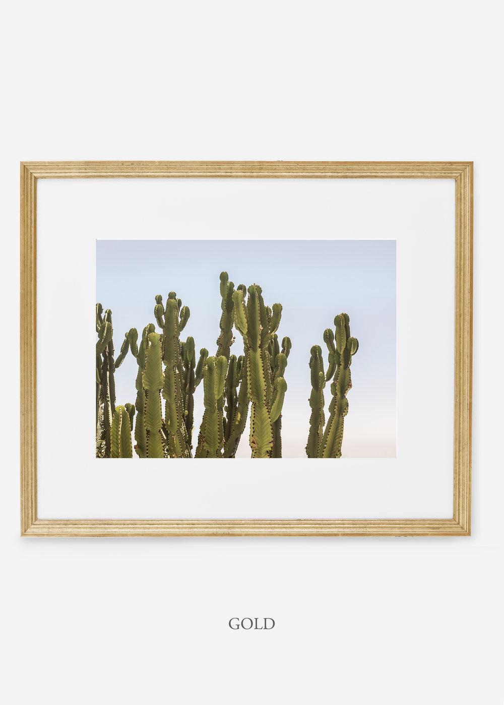 WilderCalifornia_goldframe_interiordesign_cactusprint_CaiforniaCactusNo.3.jpg