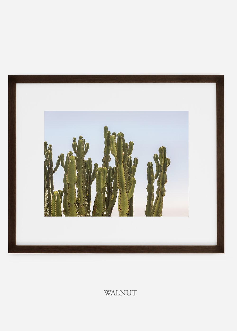 WilderCalifornia_walnutframe_interiordesign_cactusprint_CaiforniaCactusNo.3.jpg