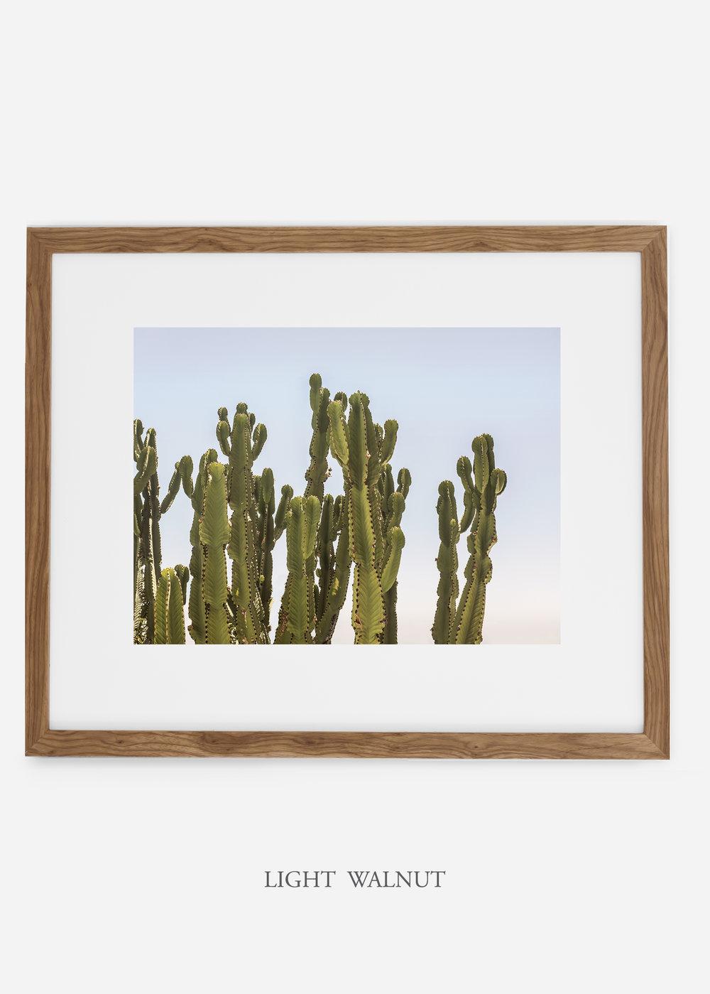 WilderCalifornia_lightwalnutframe_interiordesign_cactusprint_CaiforniaCactusNo.3.jpg