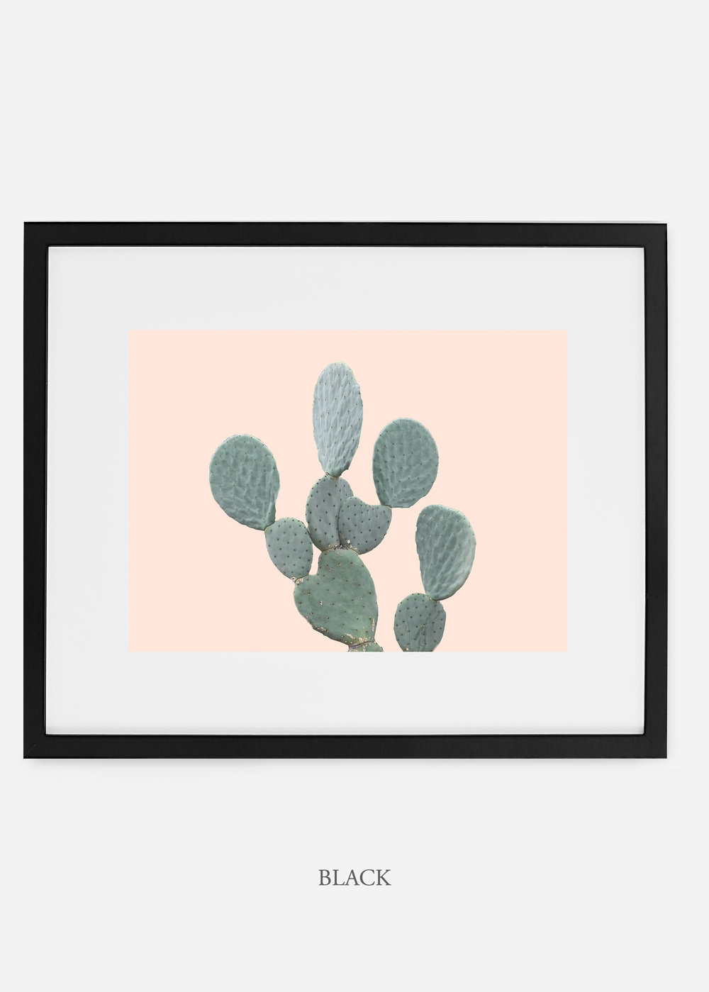 WilderCalifornia_blackframe_MinimalCactusNo.1_interiordesign_cactusprint_art.jpg