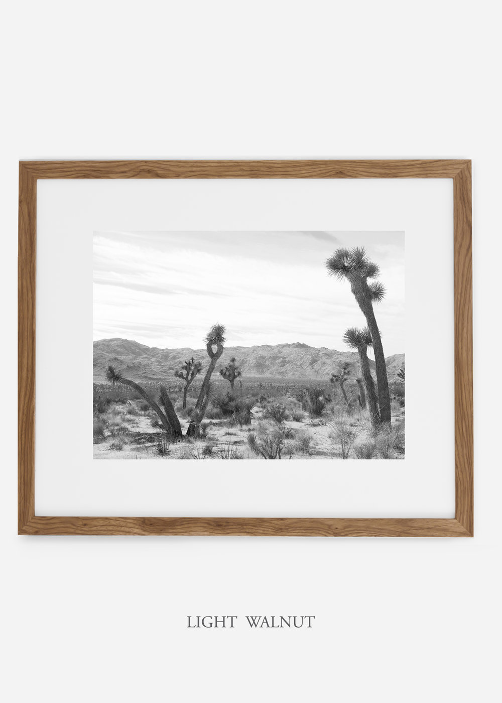 WilderCalifornia_lightwalnutframe_JoshuaTree_No.4_interiordesign_cactusprint_art.jpg