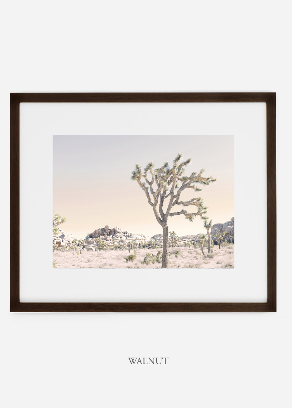 WilderCalifornia_walnutframe_JoshuaTree_No.3_interiordesign_prints_art.jpg