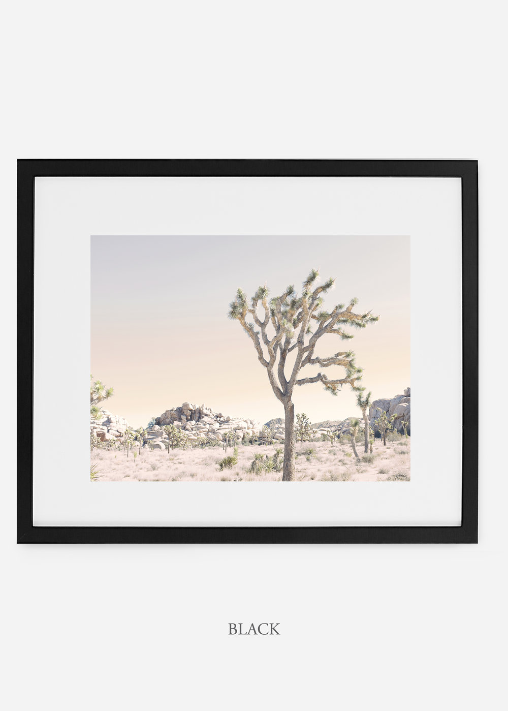 WilderCalifornia_blackframe_JoshuaTree_No.3_interiordesign_prints_art.jpg