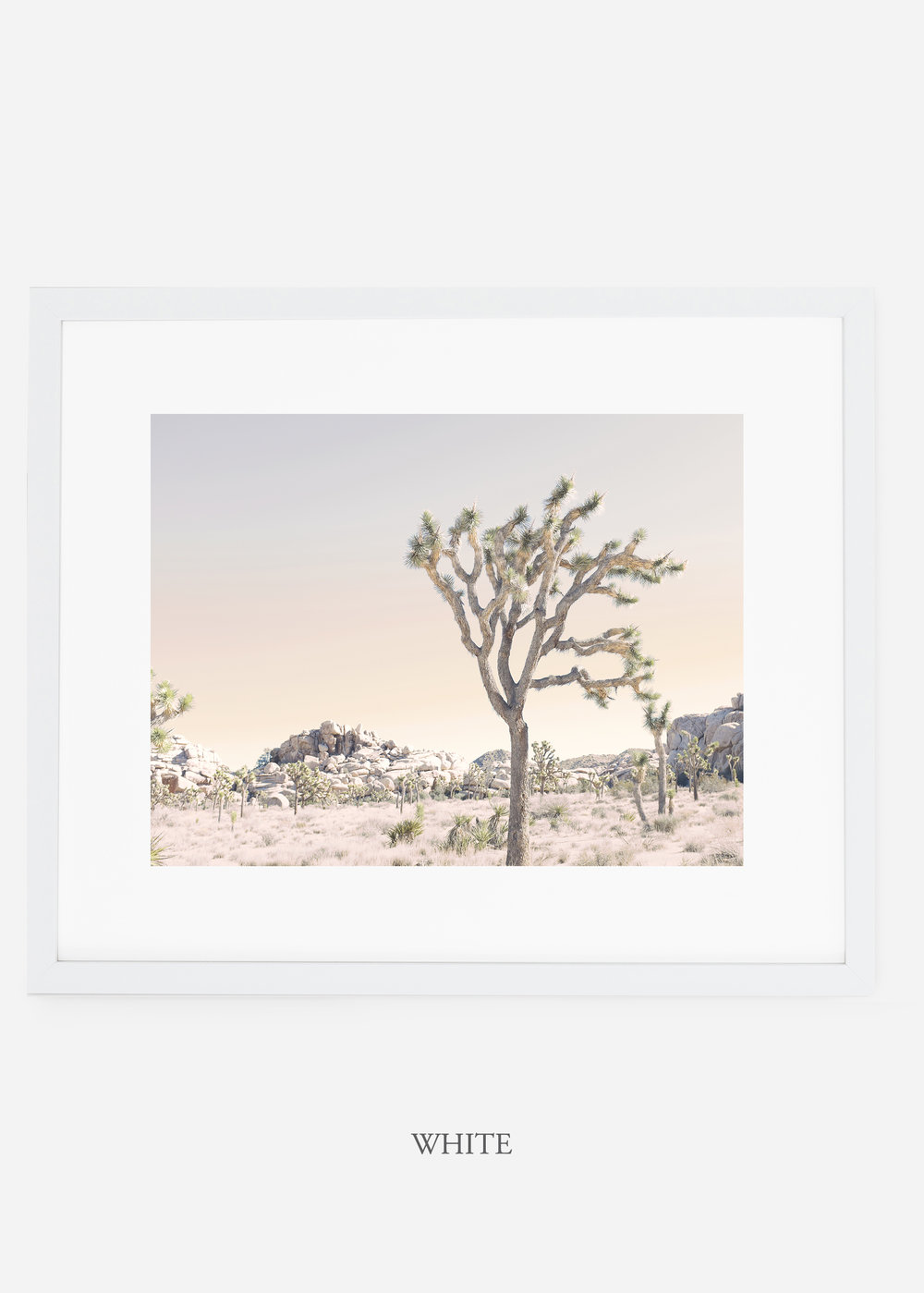 WilderCalifornia_whiteframe_JoshuaTree_No.3_interiordesign_prints_art.jpg