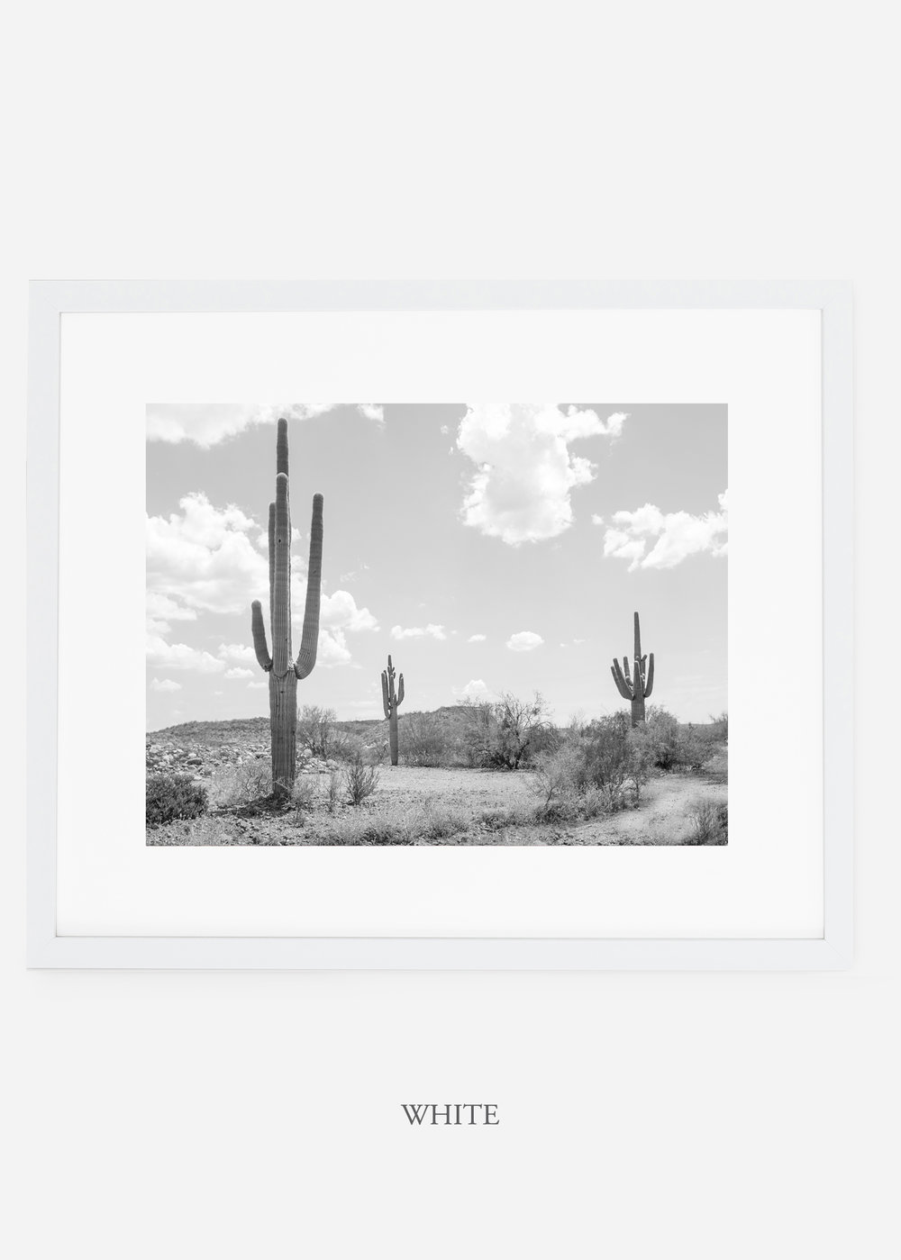 wildercalifornia_whiteframe_threesaguaro_cactus_art_interiordesign.jpg