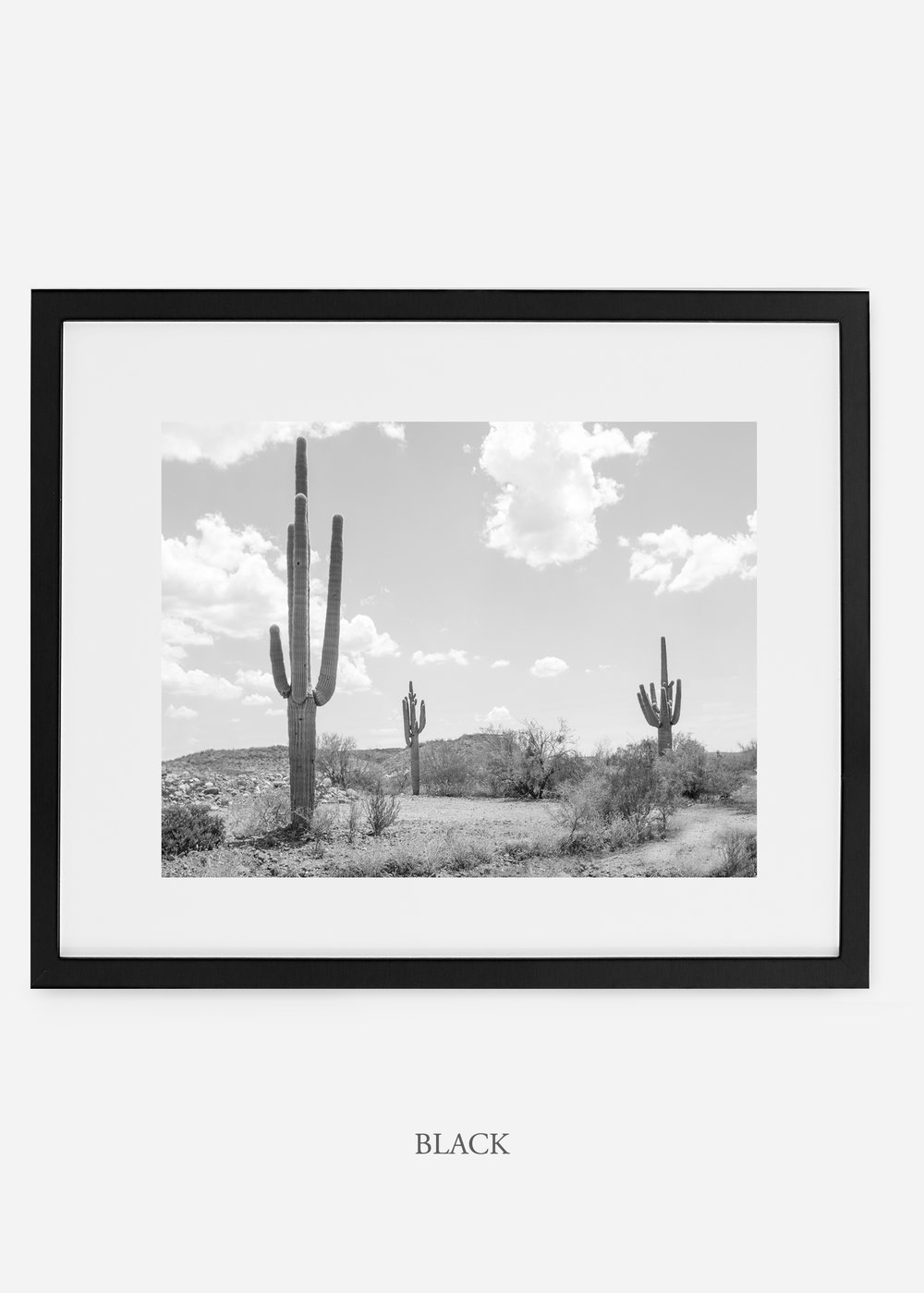 wildercalifornia_blackframe_threesaguaro_cactus_art_interiordesign.jpg