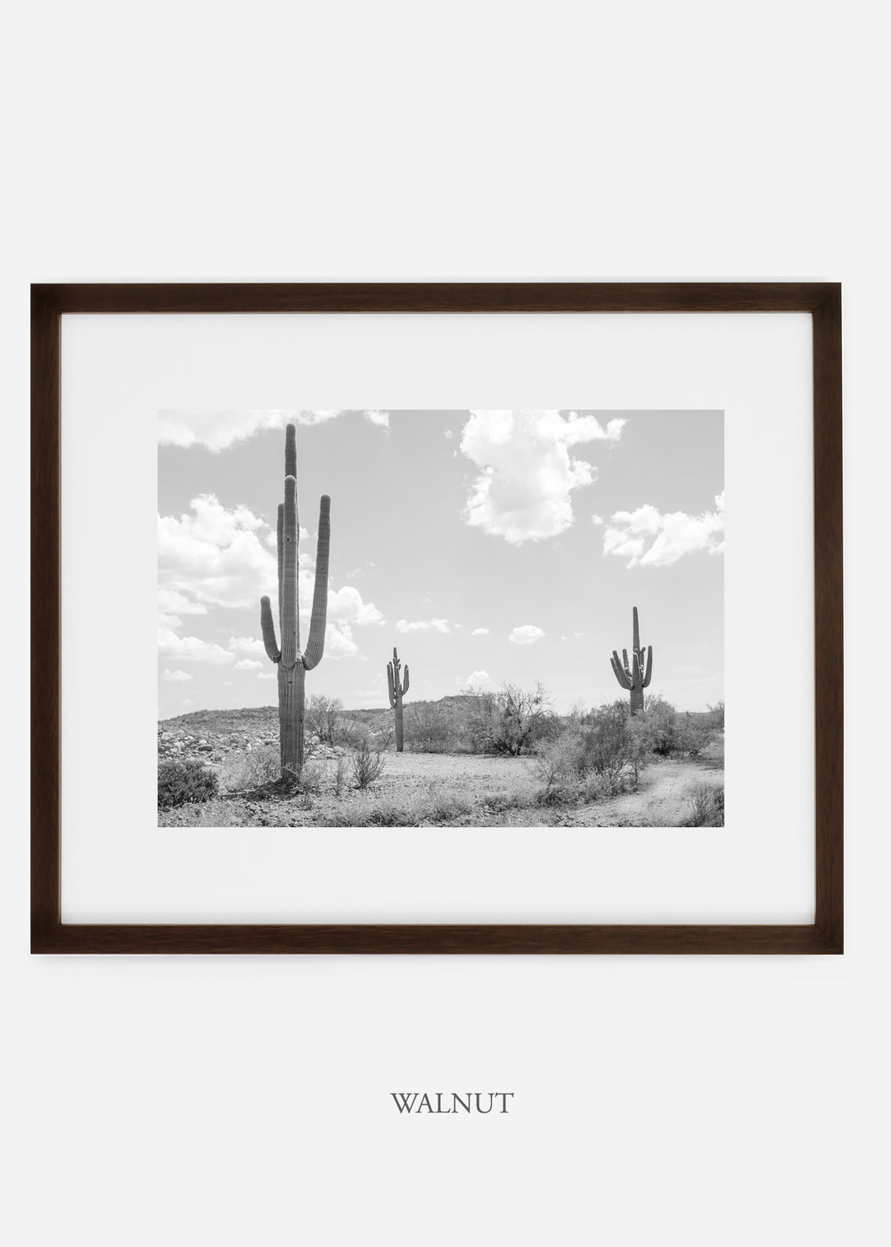 wildercalifornia_walnutframe_threesaguaro_cactus_art_interiordesign.jpg